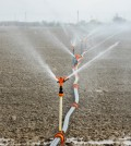 More Water Restrictions come to California
