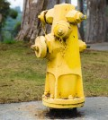 CA Fire hydrants on lockdown