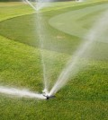 California golf courses wasting valuable water