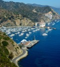 Catalina Fights California Drought