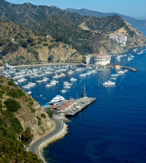 Catalina Island to receive desalination technology from GE
