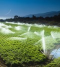 State to fund farming water projects