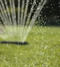 Mesa Water District eliminates outdoor watering for specific groups