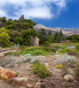 Santa Barbara Botanic Garden Chosen As 2016 City Water Hero California Water News Daily